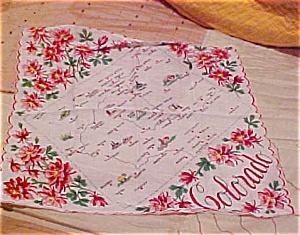 Colorado Handkerchief (Image1)