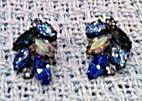 Blue rhinestone earrings (Image1)