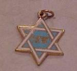 Enameled Jewish Star Charm