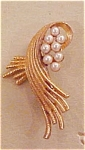 Roma goldtone pin with faux pearls