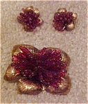 Czechoslovakian dress clip & earrings