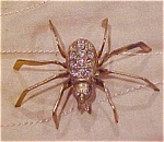 Click here to enlarge image and see more about item x3083: spider pin with rhinestones