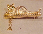 LIA cat pin with dangling fish