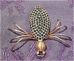 Spider pin with green rhinestones