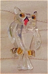 Lucite owl pin