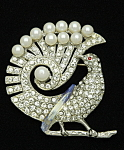 Click here to enlarge image and see more about item x6444: Peacock brooch
