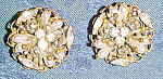 Click here to enlarge image and see more about item x6478: Robert earrings