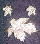 Click here to enlarge image and see more about item x6772: Rhinestone leaf pin and earrings
