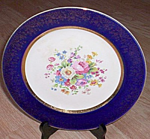 Salem China Aristocrat Dinner Plate (Image1)