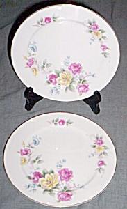 Pair (2) Noritake Salad Plates Roses (Image1)