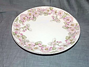 Jaeger Luncheon Plate Apple Blossoms  (Image1)
