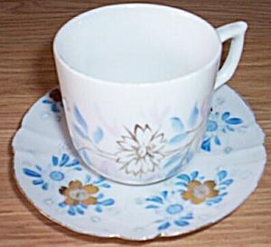 Antique Porcelain Cup and Saucer Blue Flowers (Image1)
