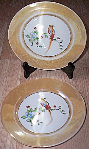 2 Porcelain Salad Plates Bird Center