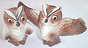 Vintage Owl Salt And Pepper Shakers Wings Spread