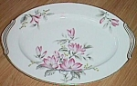 Click to view larger image of Noritake Oval Meat/Serving Platter Clayton (Image1)
