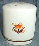 Click here to enlarge image and see more about item gw-32: Harker Pottery Pepper Oval Shaker Tulip
