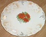 Very Old porcelain Plate w/ Poinsettia Transfer Center