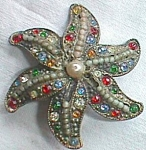 Click to view larger image of Stunning Bejeweled Antique Star Fish Brooch Free Shipping (Image1)