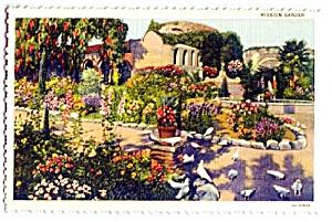 CALIFORNIA: Mission San Juan Capistrano Garden, Pigeons (Image1)