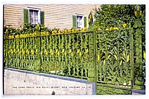 LOUISIANA: Historic Corn Fence, New Orleans (Image1)