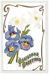 Pansies & Poppies -- Christmas Greetings