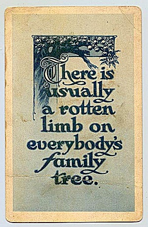 A Rotten Limb … on Every Family Tree!  Vintage 1900 Postcard (Image1)