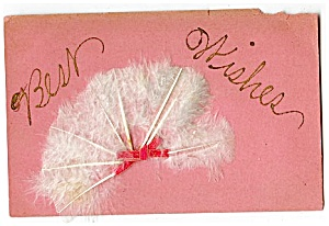 Early & Unique, Real Feathers, Best Wishes (Image1)