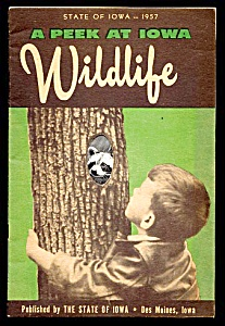 1957 Peek @ Iowa Wildlife