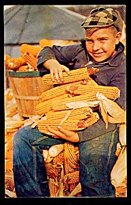 IOWA: Cute Farm Boy, Corn is Still King (Image1)