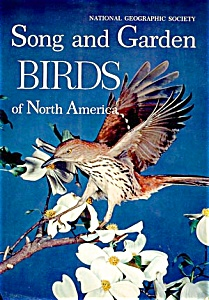 Song And Garden Birds Of North America. 555 Large Color Illustrations