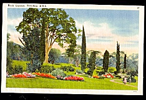 TRINIDAD, B.W.I. Rock Garden (Image1)