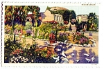 Click here to enlarge image and see more about item 1095: CALIFORNIA: Mission San Juan Capistrano Garden, Pigeons