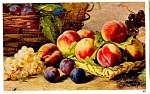 1908 Peaches, Plums Grapes Still life