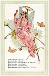 Pretty Pink Angel � Here�s to You!