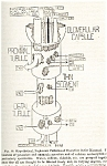 Click here to enlarge image and see more about item 5159: Urinary Function of Kidney, 1950