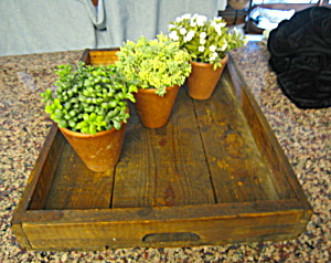 Primitive Wood Berry Tray