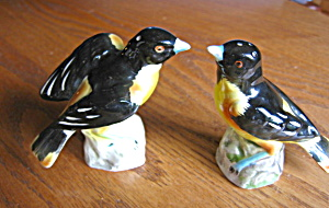 Vintage Bird Shakers (Image1)