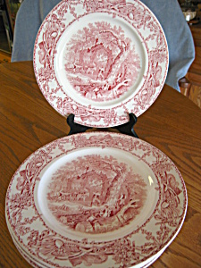 Vintage Royal Staffordshire Plates - Two