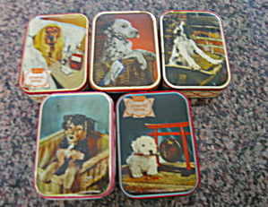 Vintage Toffee Tins W/dogs