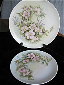 Hutschenreuther Hand Painted Porcelain Plates