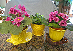 McCoy Pottery Yellow Pots Saucers (Image1)