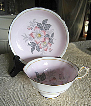 Paragon Queen Mary Pastel Teacup