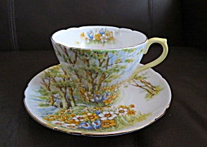 Shelley Daffodil Time Teacup