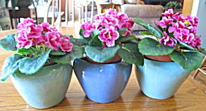 Zanesville Stoneware Vase Planters (Image1)