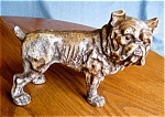 Click here to enlarge image and see more about item bank110510: Antique Bulldog Bank