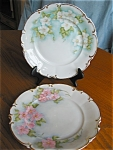 Click here to enlarge image and see more about item bavaria50413: Two Hand Painted Hutschenreuther Bavarian Plates