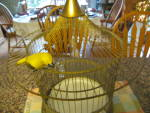 Click to view larger image of Vintage Bird Cage Ornament Canary (Image4)