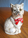 Cat Bank Antique Glass Eyes