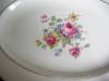 Click to view larger image of Vintage Canonsburg China Platter (Image2)