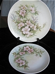 Click here to enlarge image and see more about item hutschenreuther120513: Hutschenreuther Hand Painted Porcelain Plates